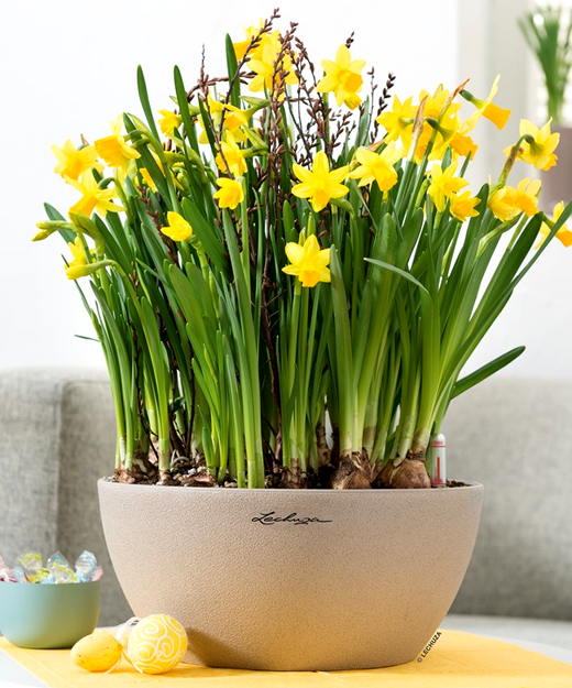 Office Flower Pots Our Planters Are Shatter Proof Lightweight
