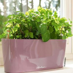 Delta Gift planter