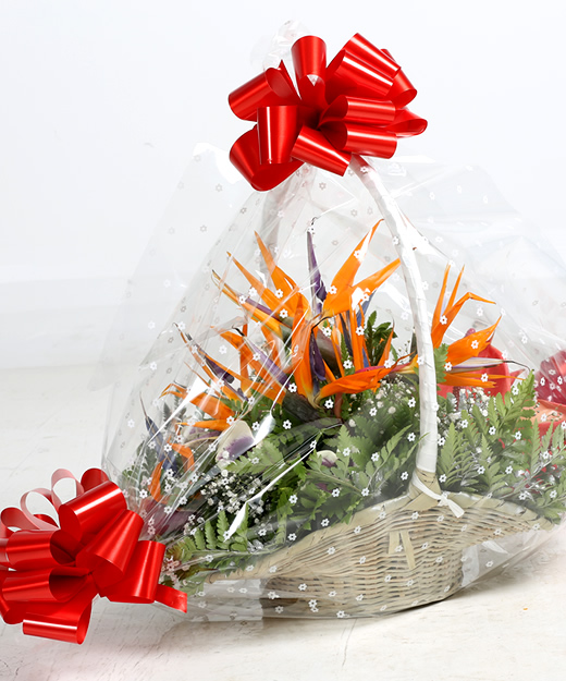 Executive Bouquet-Birds of paradise-ythera