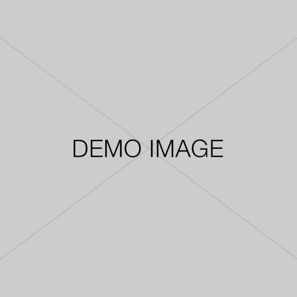 demo-image-2.png