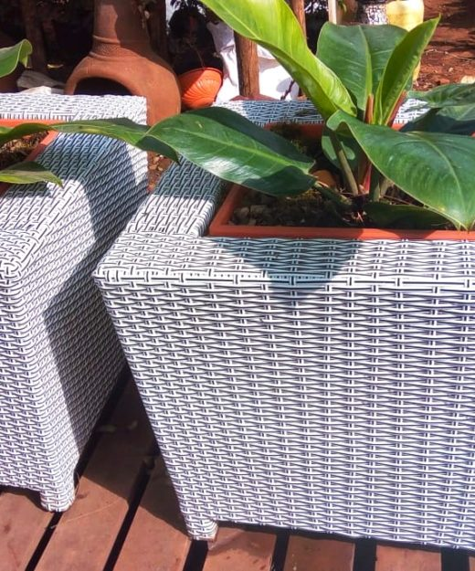 Mini Cubi Rattan Planter