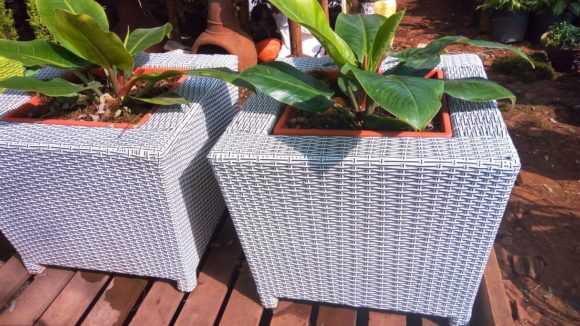 Mini Cubi Rattan Planter