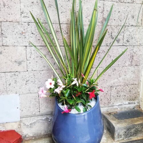 Ronto fiber glass planter