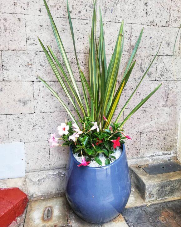 Ronto fiber glass planter