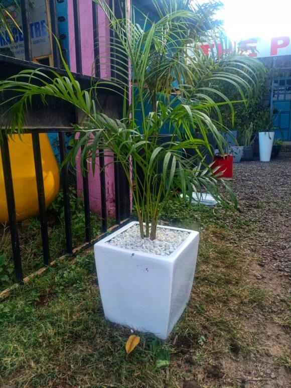 Quadro max fiber planter