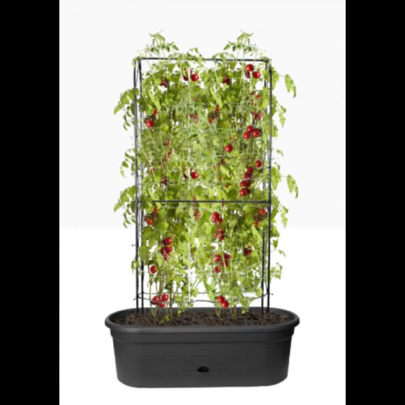 veggie wall planter