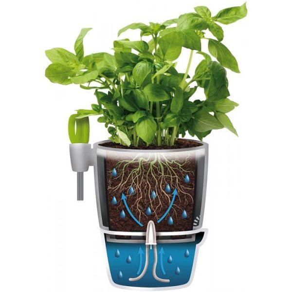 Flowerpot & Herb Scissors
