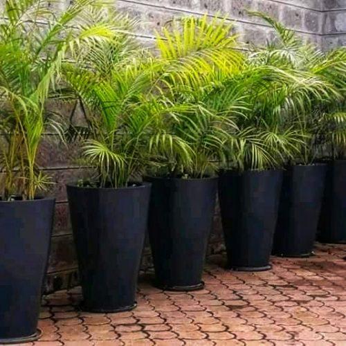 vintage-cone-planter